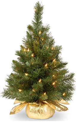 """clear National Tree Company 24"""" Majestic Fir Tree in Gold Cloth Bag with 35 lights"""