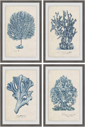 STUDY Marmont Hill Sea Coral Quadriptych (Framed Giclee) (Set of 4)