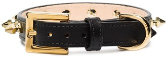 Black & Brown Jessie bullet studded collar