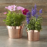 Williams-Sonoma Williams Sonoma Copper Flower Pot
