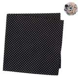 Original Penguin Cooper Dot Pocket Square & Lapel Pin Set