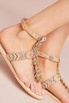 Sam Edelman Fringe Gladiator Sandals