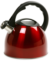 Norpro Stainless Tea Kettle