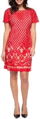 Dex Lace Shift Dress