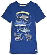 Joules Blue Shark Glow In The Dark Jersey Tee