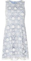 Dorothy Perkins Womens Petite Blue Daisy Prom Dress- Blue