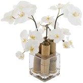 SIA White Phalaenopsis Orchid with Bamboo - Small