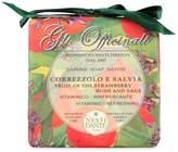 Nesti Dante Strawberry & Sage Soap by 250g Bar)