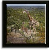Bed Bath & Beyond Giraffe Wall Art