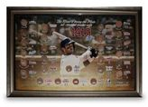 Steiner Sports Framed David Wright Collage