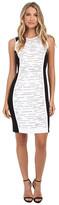 Calvin Klein Blocked Dress w/ Matte Stud Layout