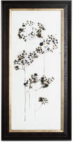 Graham & Brown Seed Head II Acrylic Framed Print