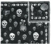 Alexander McQueen shipping and skull print scarf