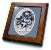 3dRose LLC ft_596_1 Dogs Dachshund - Long Hair Dapple Dachshund - Framed Tiles