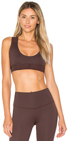 Touche LA x MORGAN STEWART Contrast Sports Bra