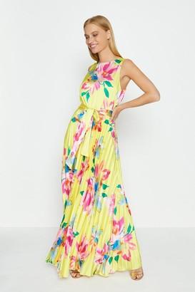 Coast Pleated Skirt Maxi Dress
