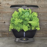 Williams-Sonoma Williams Sonoma AeroGarden Classic 6