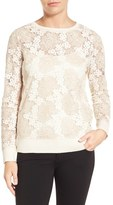 Halogen Long Sleeve Lace Top (Regular & Petite)