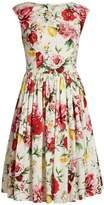 Dolce & Gabbana Floral-print boat-neck dress