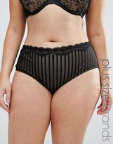City Chic Fifi Short Brief