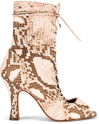 Paris Texas Faded Python Print Lace Up Bootie in Faded Pink | FWRD