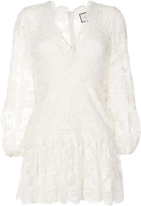 Alexis Embroidered Sheer Sleeve Dress