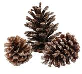 Wondershop 15ct Holiday Accessory Glitter Pinecones