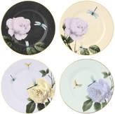 Ted Baker Rosie Lee Salad Plate - Assorted - Set of 4