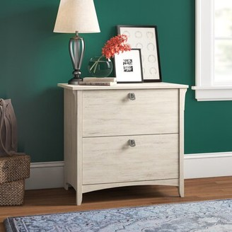 Three Posts Salina 2-Drawer Lateral Filing Cabinet Color: Antique White