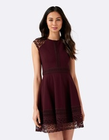 Forever New Karla Ponte Lace Dress