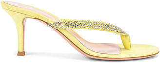 Gianvito Rossi Diva Flip Flop Sandals in Lemonade | FWRD
