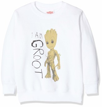 Marvel Boy's Guardians of The Galaxy Vol.2 I Am Groot Scribbles Sweatshirt