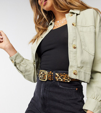My Accessories London Exclusive waist and hip jeans belt in leopard print with gold buckle
