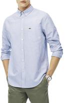 Lacoste Reg Fit Stripe Oxford Shirt
