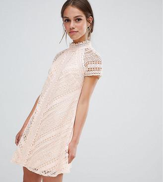 Little Mistress Petite all over lace mini shift dress-Pink