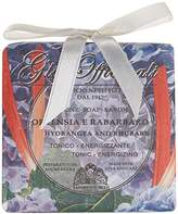 Nesti Dante Gli Officinali Soap, Hydrangea and Rhubarb/Tonic and Energizing, 7 Ounce