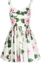 Dolce & Gabbana tropical rose print dress
