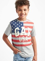 Gap Flag and logo sueded tee