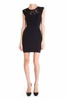 David Lerner Lace Tank Dress in Black