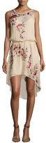 Haute Hippie Sleeveless Floral-Embroidered Dress, Swan/Multi