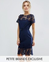 Paper Dolls Petite Lace Contrast Midi Ribbed Pencil Dress With Belt