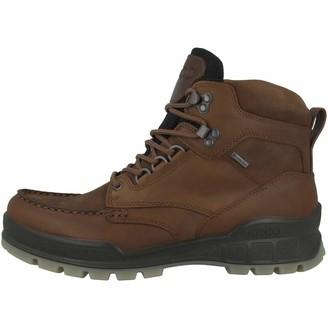 Ecco Men's Track 25 High GORE-TEX waterproof outdoor hiking Boot Bison/Bison 49 M EU (15-15.5 US)