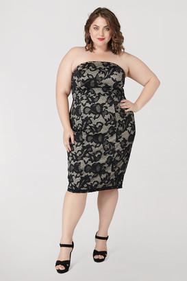 Marée Pour Toi Bustier Lace Sheath Dress in Black Size 12