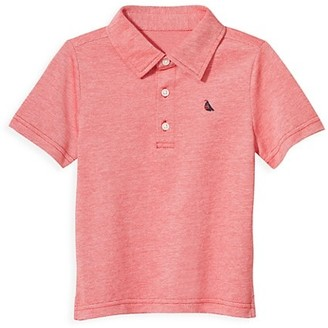 Janie and Jack Baby's, Little Boy's & Boy's Pique Polo Shirt