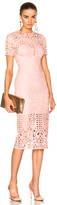 Lover Harmony Sheath Dress in Pink.