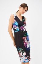 Coast Sleeveless Floral Printed V-Neck Scuba Dress