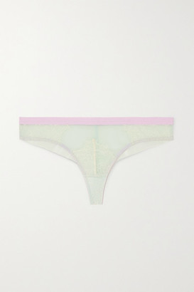 Dora Larsen Marlowe Stretch-lace And Tulle Briefs - Mint