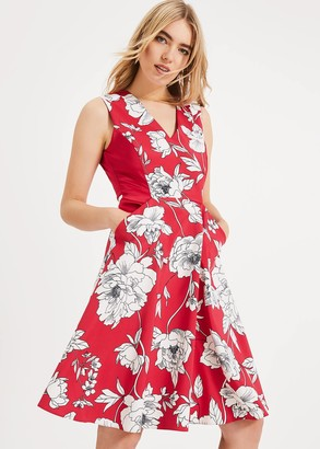 Phase Eight Eve Floral Fit & Flare Dress