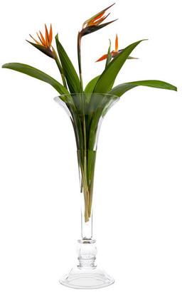 Abigails Paris Vase