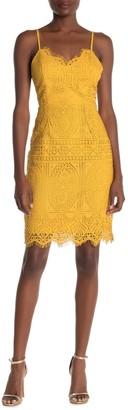 One One Six Juniper Scallop Hem Detail Lace Dress